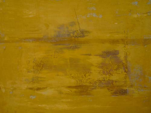 110401koyama_yellow.jpg